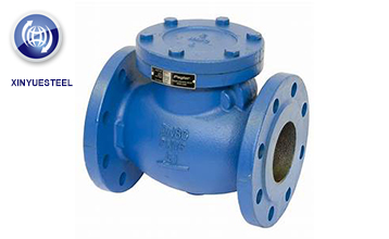 A brief introduction to Check Valve